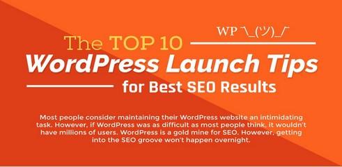 wordpress-infographie-top